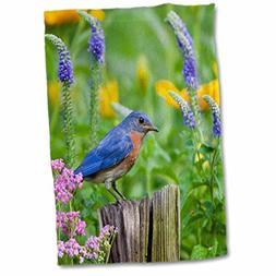 3D Rose Eastern Bluebird on Fence Post in Flower Garden Mari