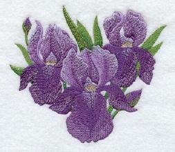 iris of beauty design set of 2