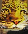 New Leopard Big Eyes Beach Bath Pool Towel Gift Animal Print